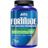 ANS Performance FORTITUDE Review