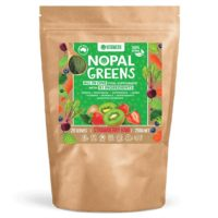 Vitawerx Nopal Greens Review